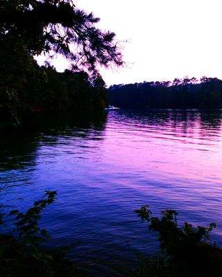A Wide View Of A Purple Tennessee Sky Over Lake At Dusk