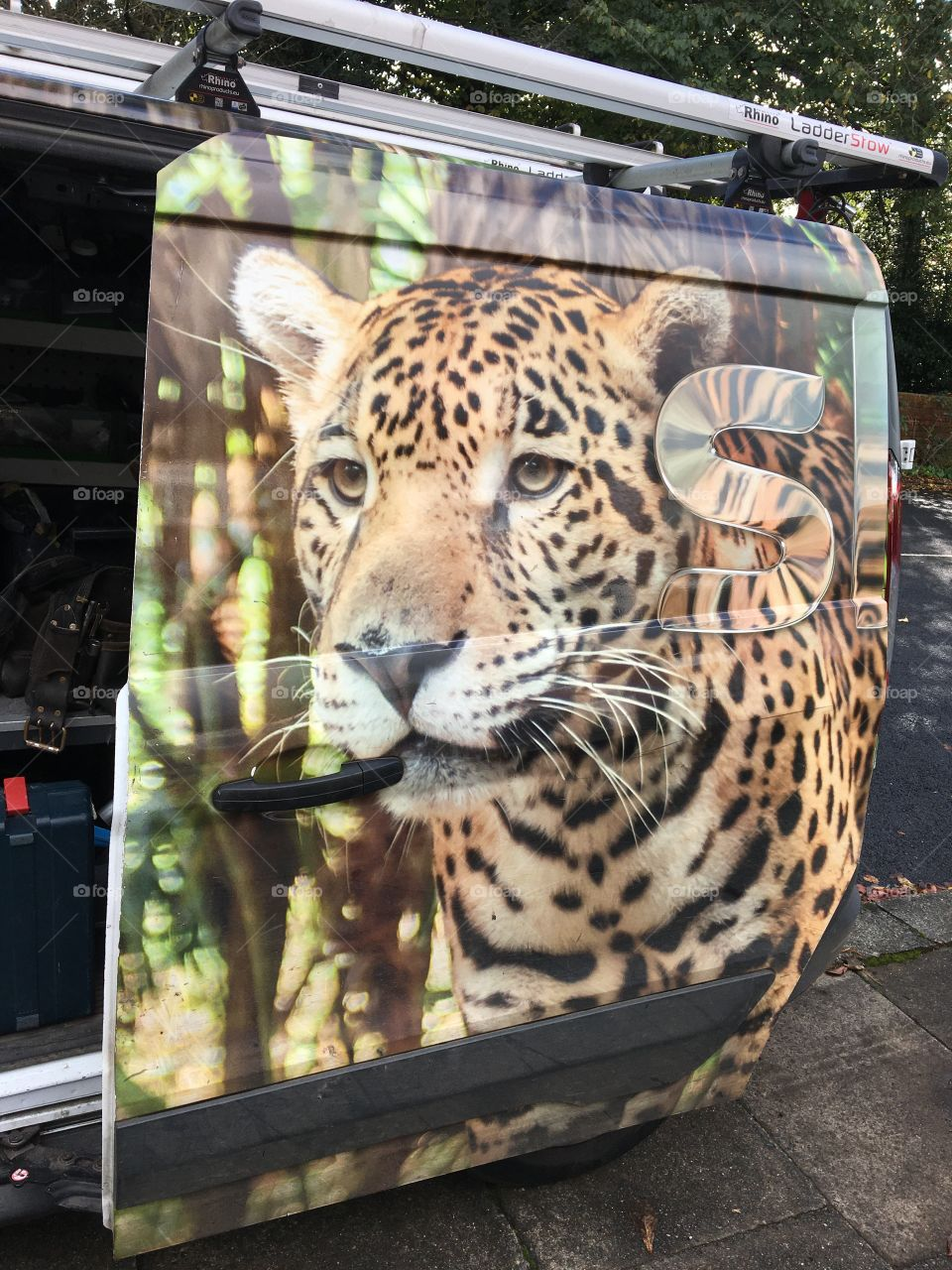 Beautiful eye catching SKY Van ... Leopard graffix makes it stand out