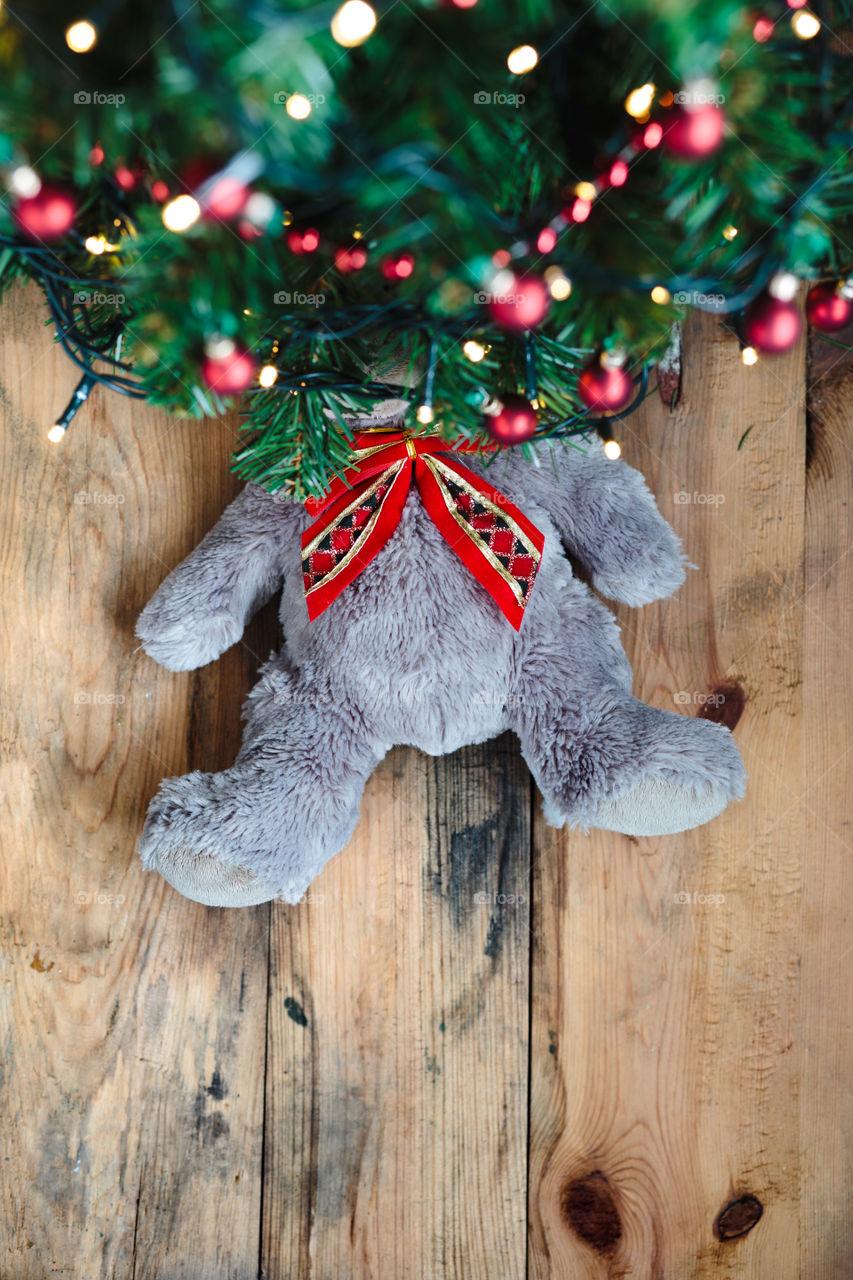 Teddy bear under the Christmas tree