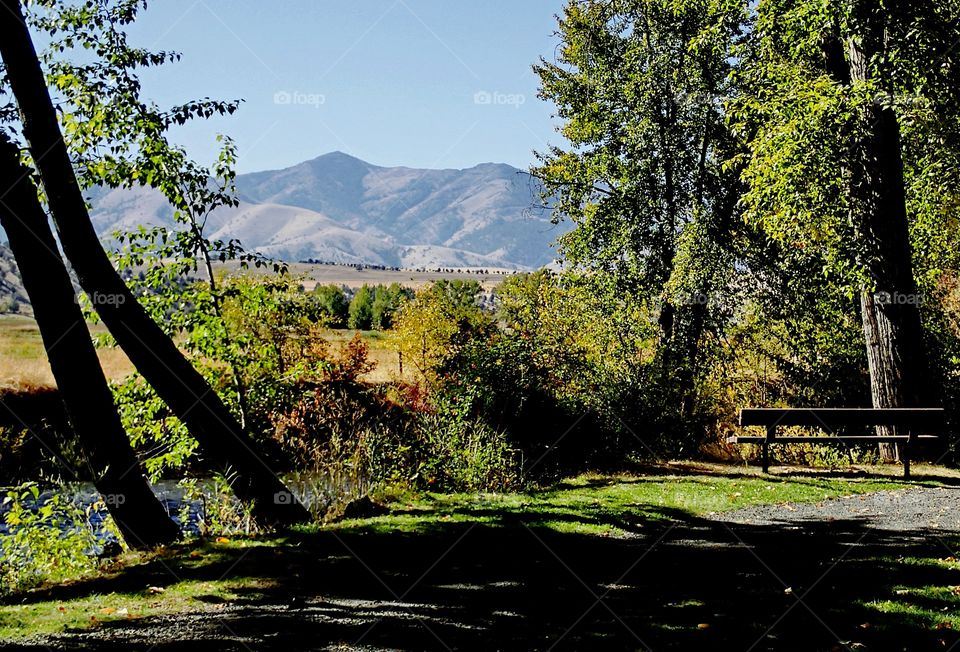 a park bench in the countryside of Eastern Oregon overlooking the John Day River with hills in the background on a sunny fall day.