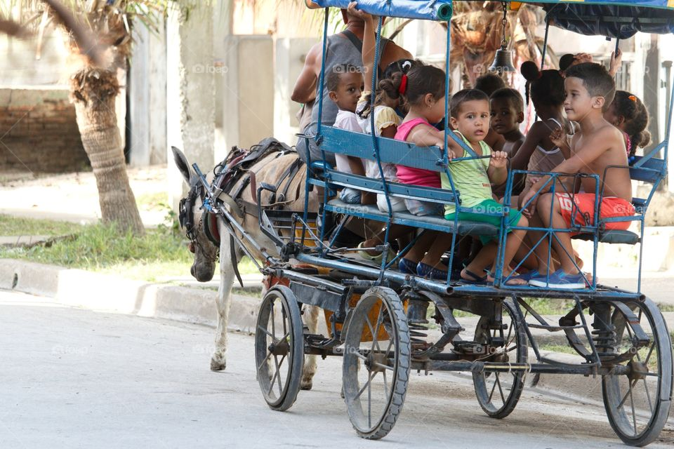 Cuban People.Donkey cart