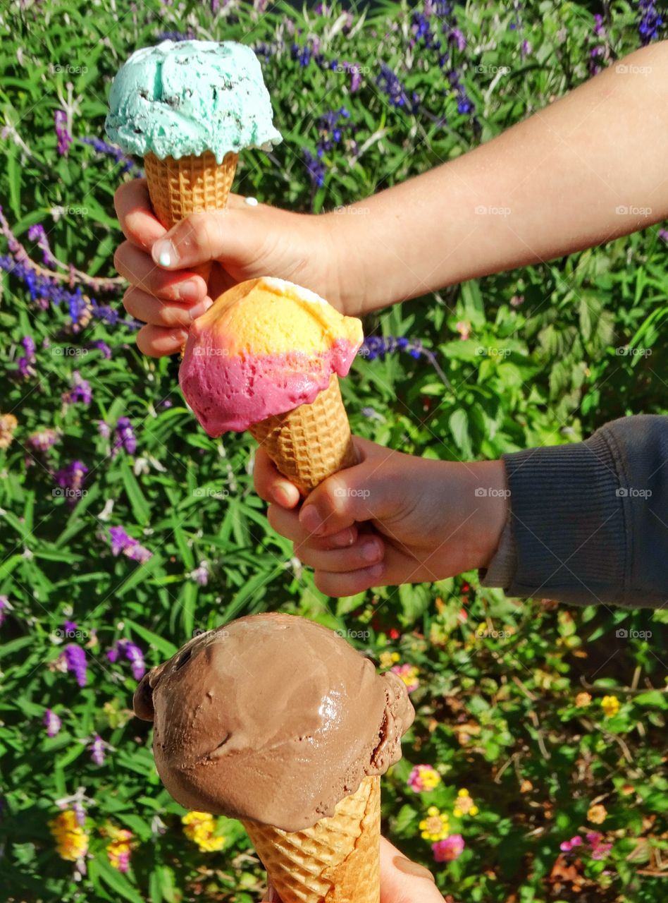 Hands Holding Ice Cream. Hands Holding Three Different Colorful Flavors Of Ice Cream