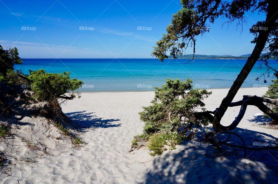 Alghero Sardegna