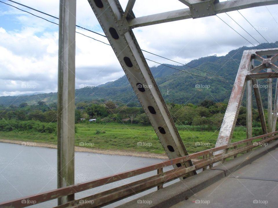 Bridge to Rainforest
