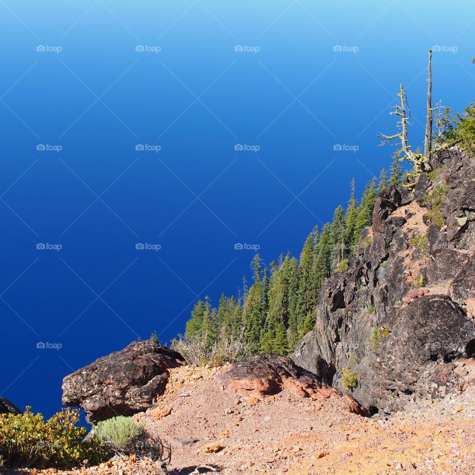 The steep tree and boulder covered ledge into the deep rich blue waters of Crater Lake in Southern Oregon on a beautiful summer morning.