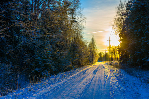 Telephone  poles disappear into the sunset on a snowy forest road