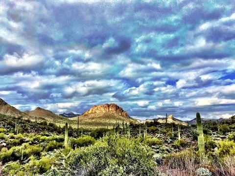 Desert Landscape of Arizona. Desert Landscape taken in the Superstition Mountains near Phoenix, Arizona.