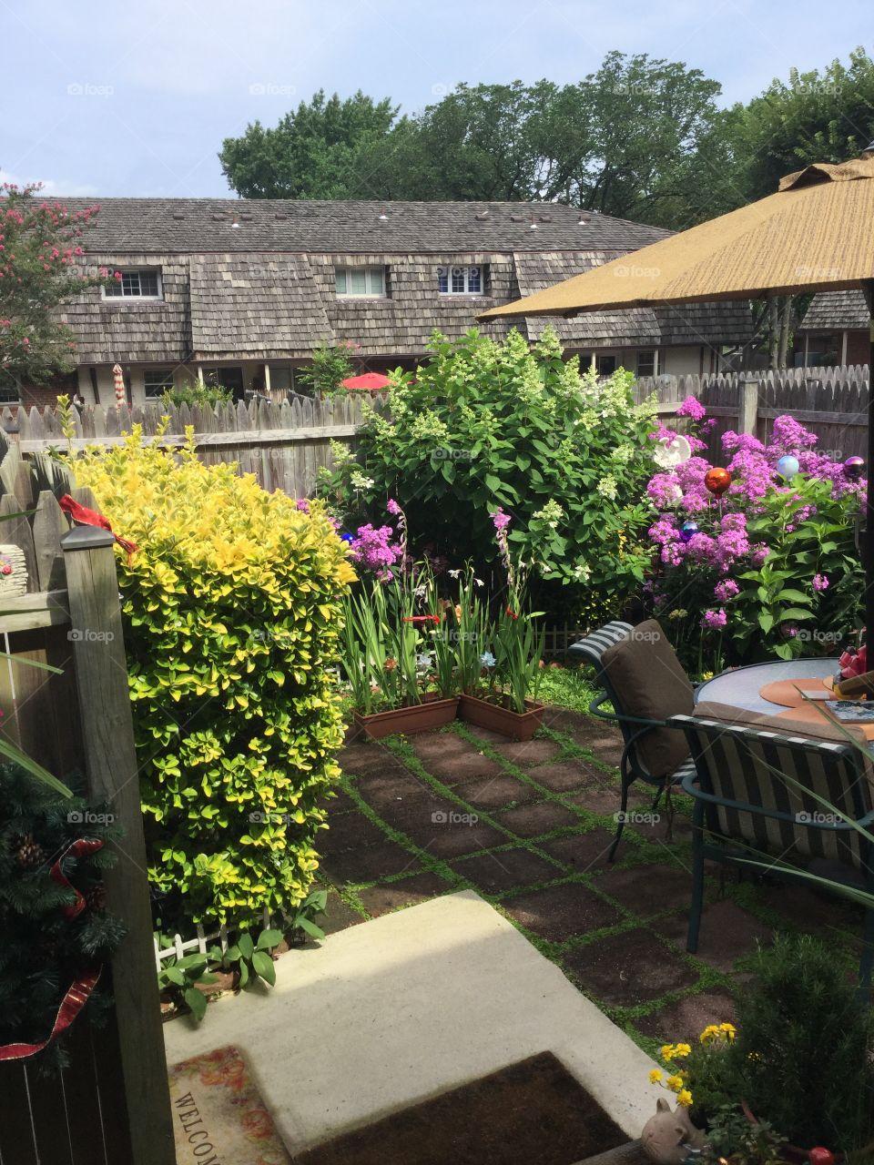 Backyard patio in July