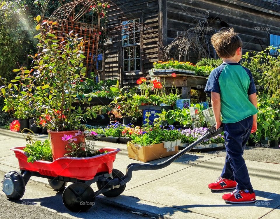 Little Boy With Red Wagon In The Garden