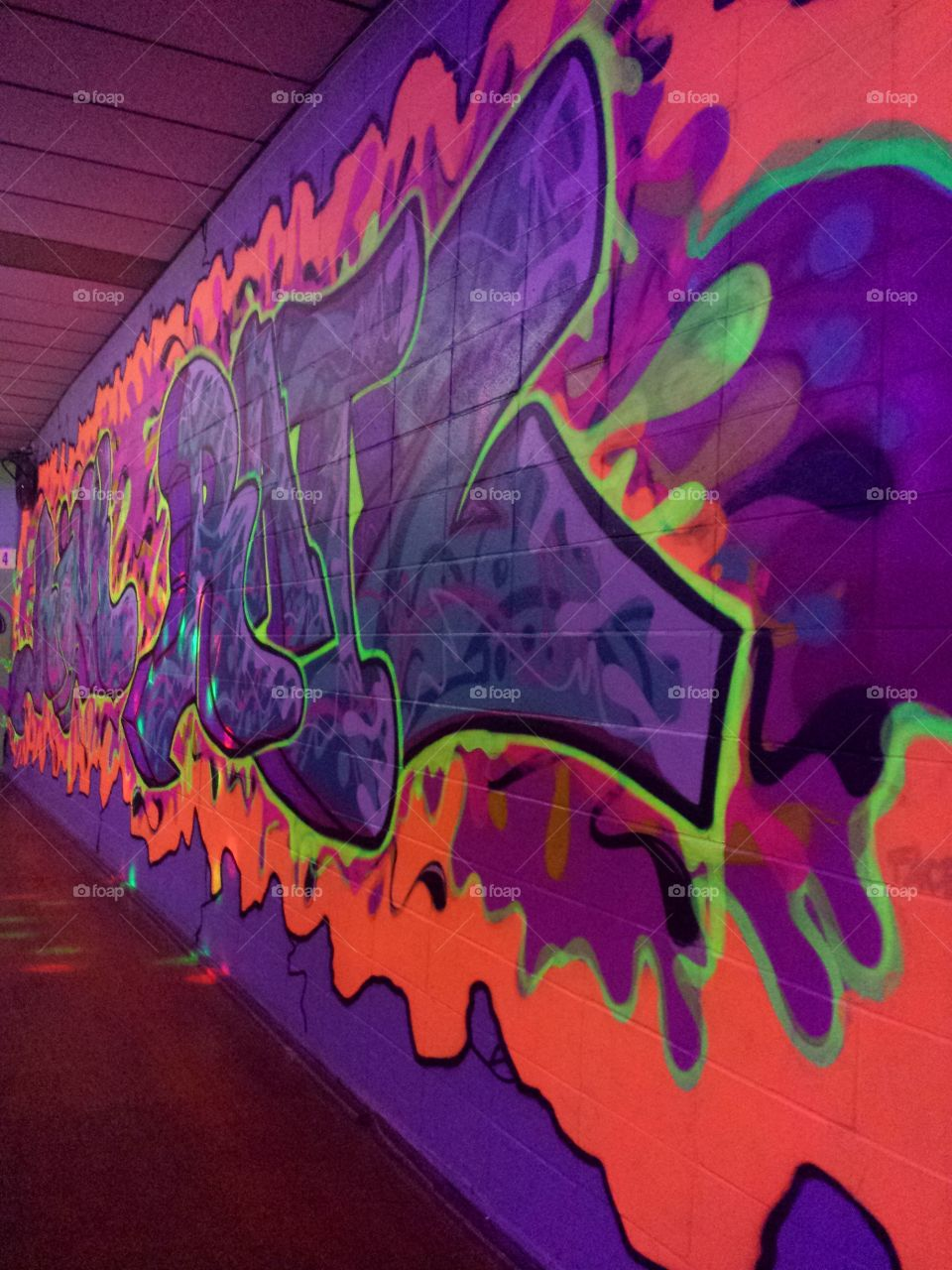 Rink Rats Murals