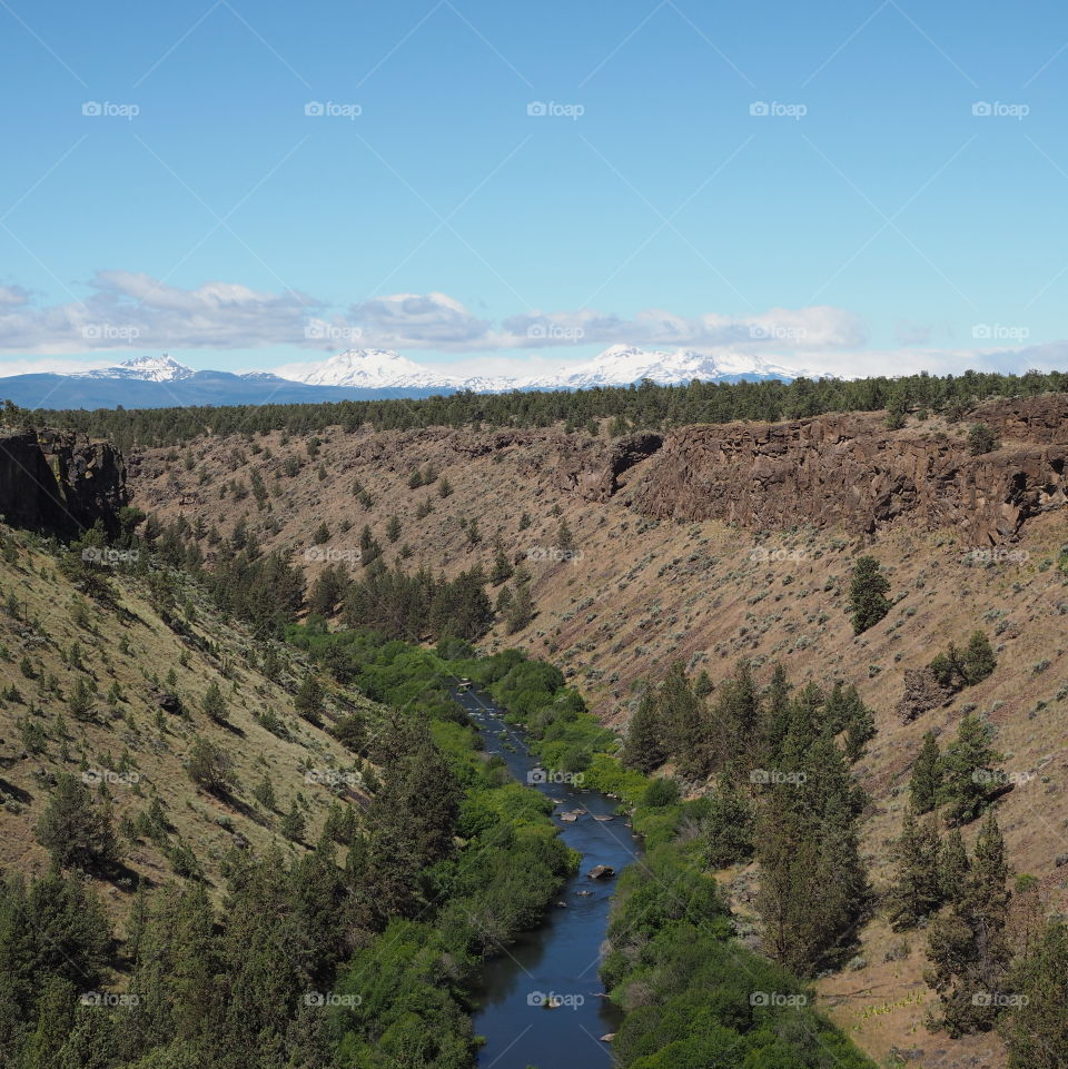 The blue waters of the Deschutes River wind through a canyon with lush green trees and bushes on a sunny day in Central Oregon.
