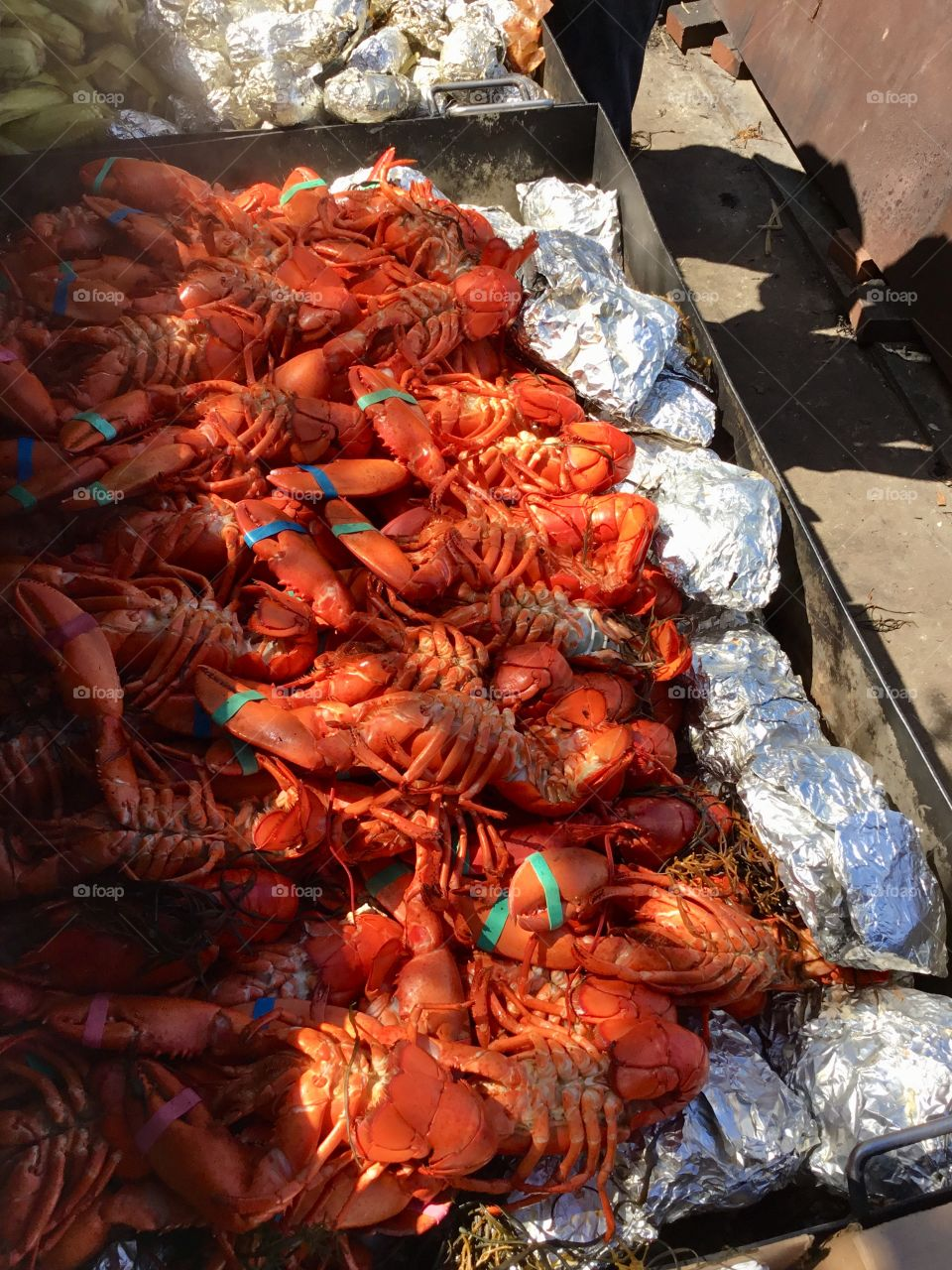 New England Lobster Bake - Fresh Maine Lobsters 🦞