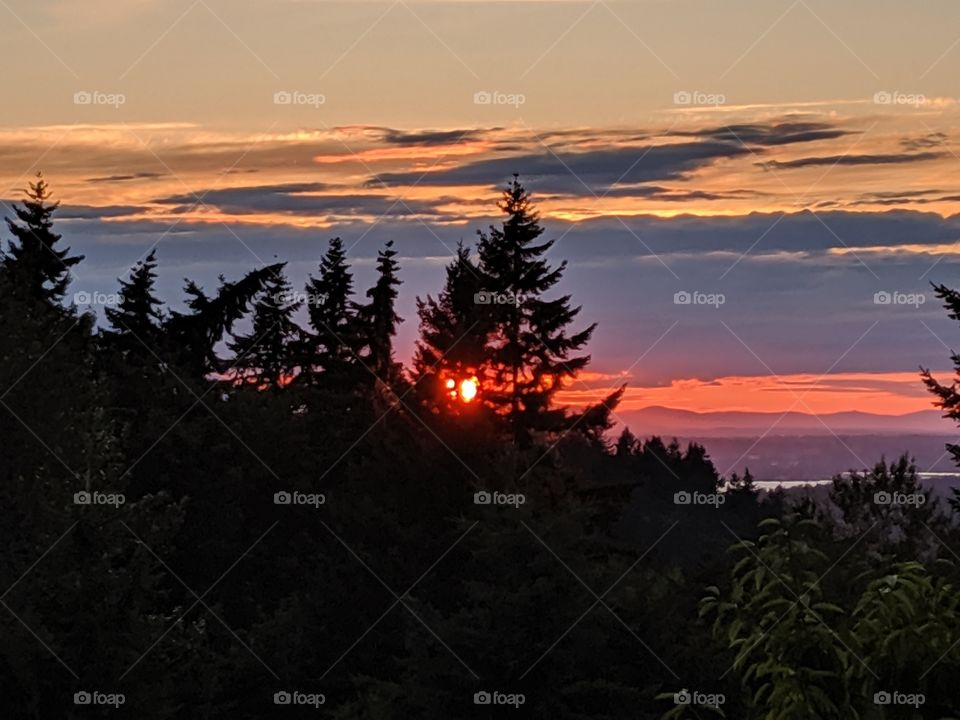 beautiful sunset behind trees July 12th 2019