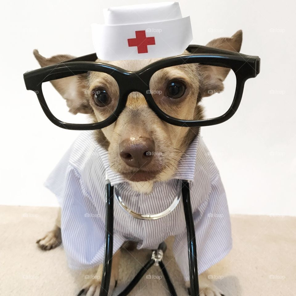 I'm Dr. Ollie at your service