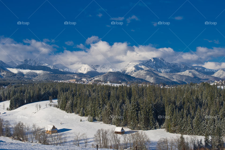 Mountain range and woodland in winter