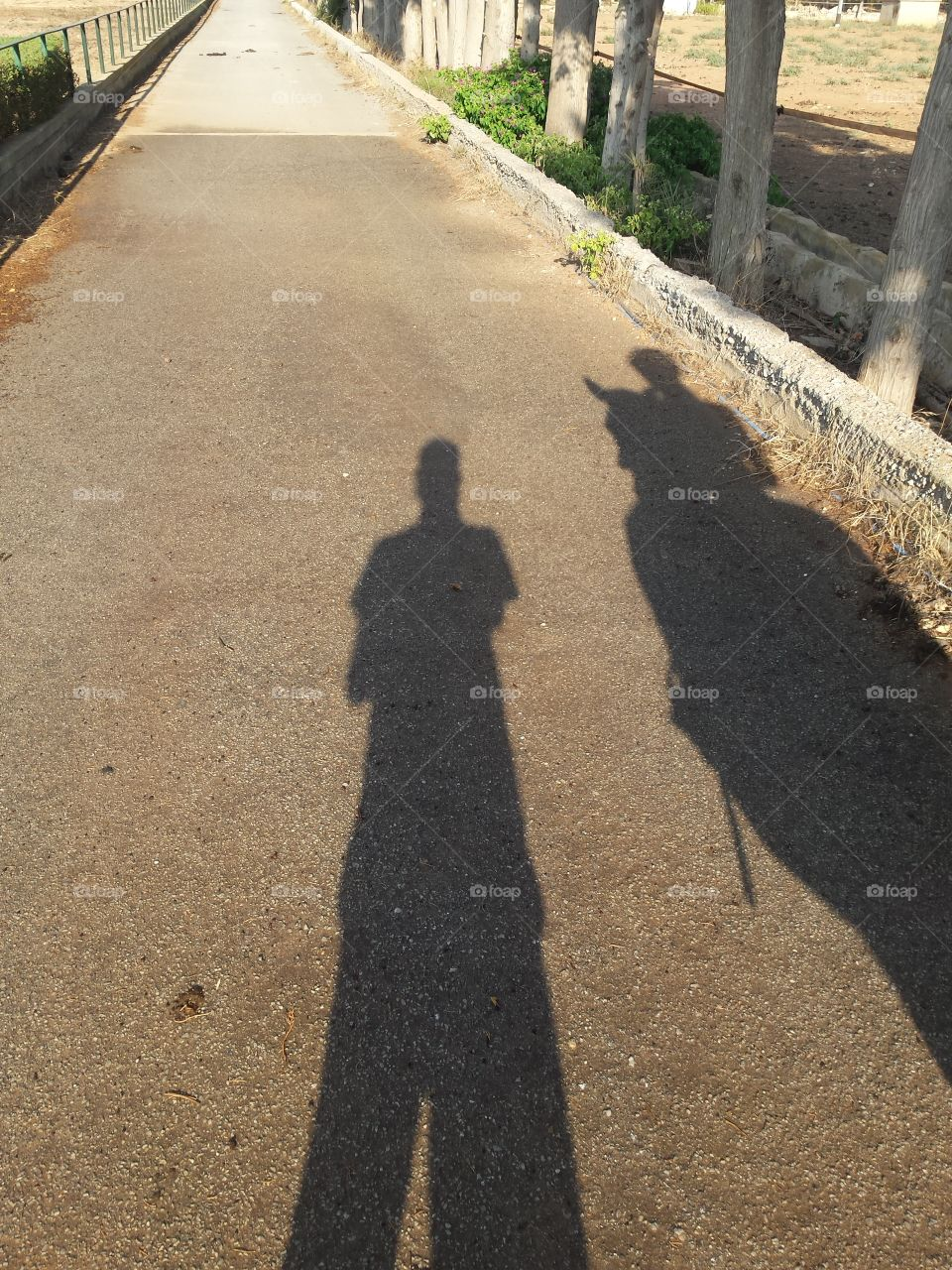 Two near shadows walking on a street, one of them on a horse, when sunset starting. Meadow and trees on right side