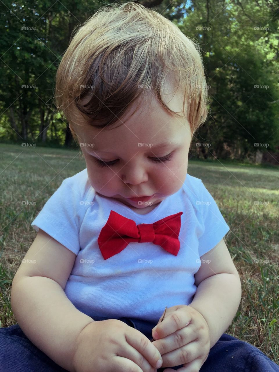 Little Bow tie