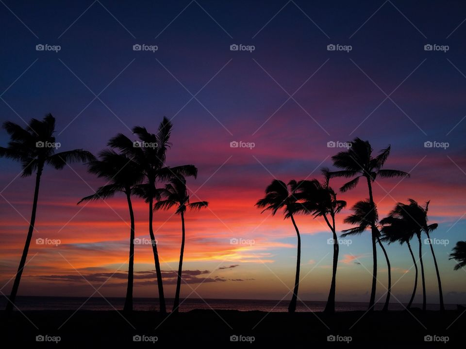 Colorful skies . Awesome colors after sunset