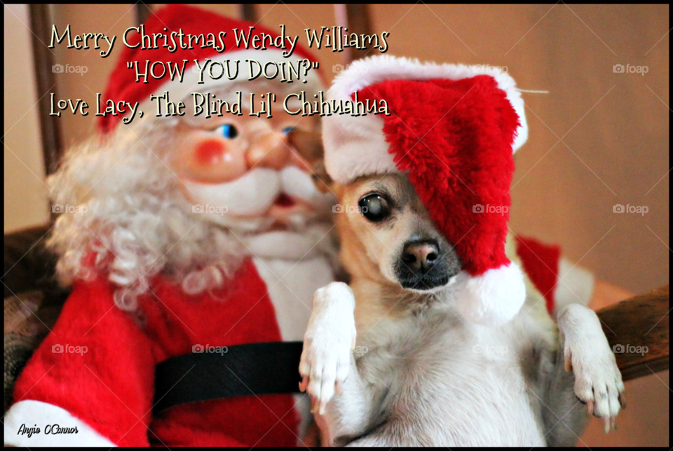 Christmas card for Wendy Williams