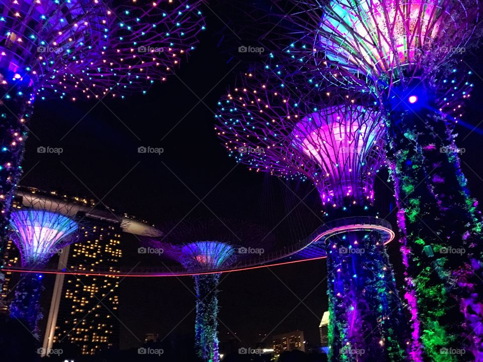 All of the lights - Garden by the Bay, Singapore