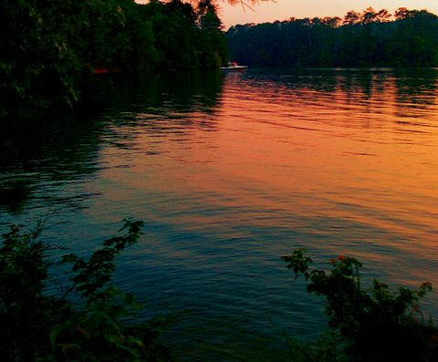 wide view of the glowing Tennessee Sky Over Lake