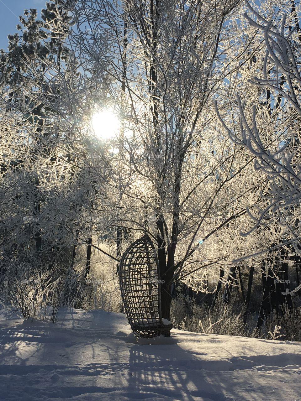 Frosty paradise