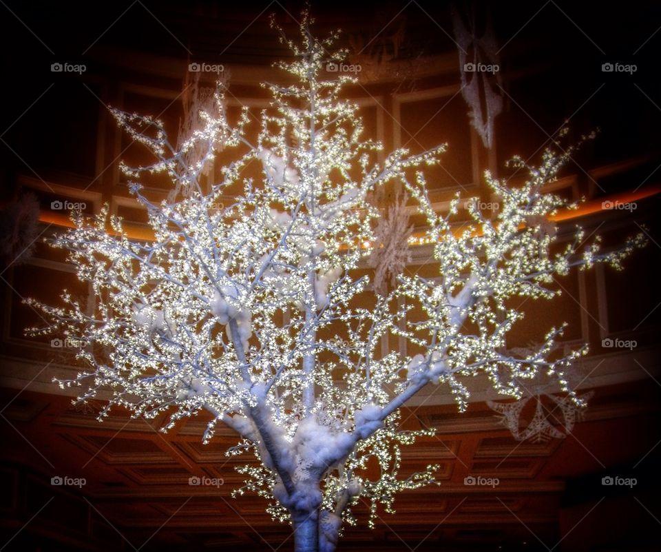 Christmas | no person, abstract, winter, desktop