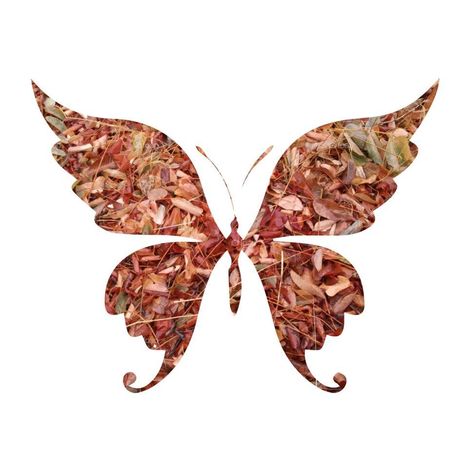 Nature, Disjunct, Decoration, Desktop, Butterfly