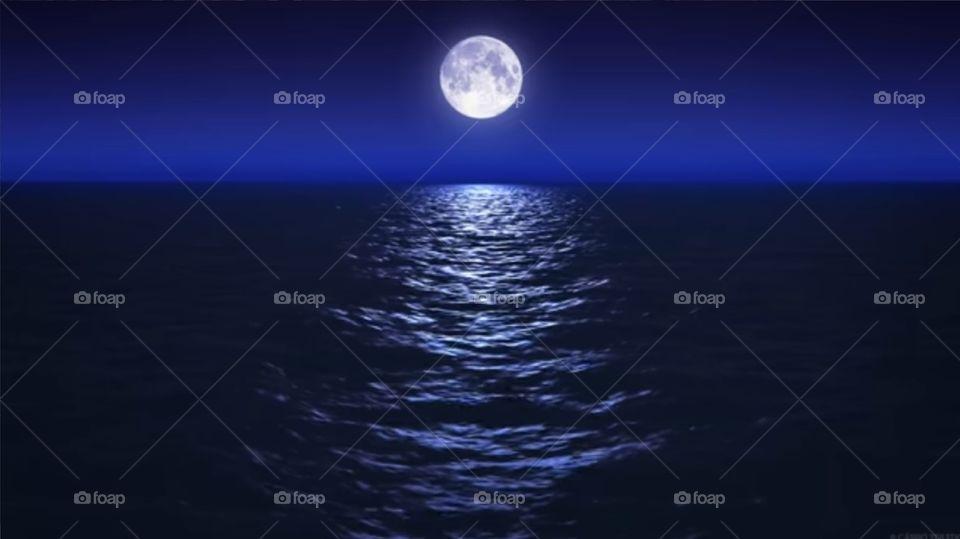 The Night  Moon