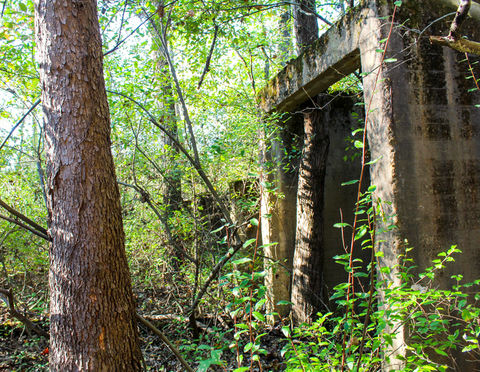 Abandoned concrete remains from WWll era West Virginia Ordinance Works which manufactured TNT