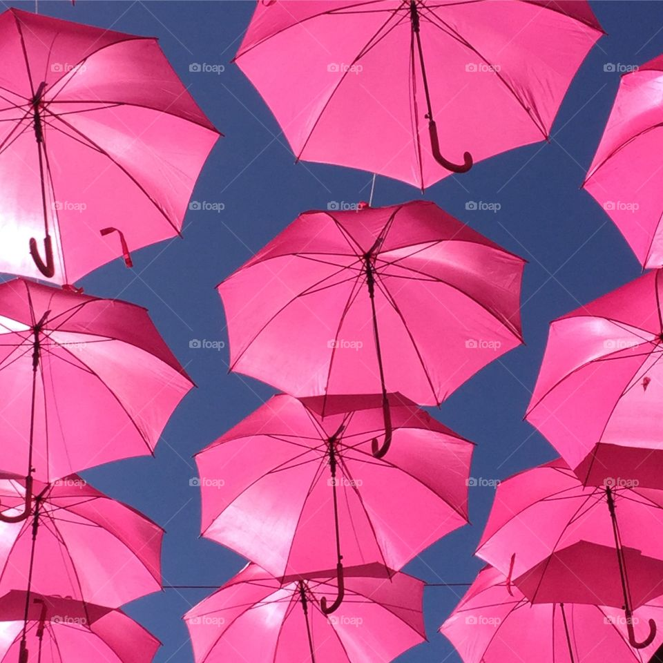 Pink umbrellas hanging from rope