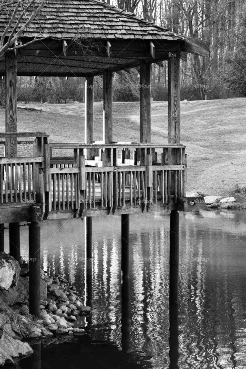 Pagoda in Black and White