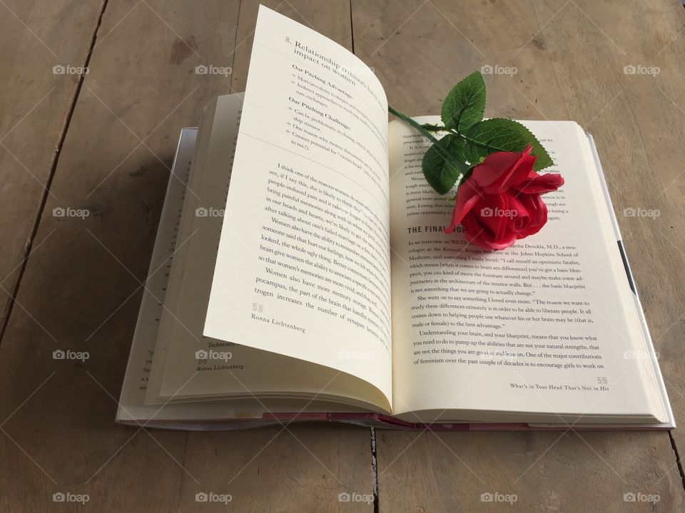 Book with a red rose