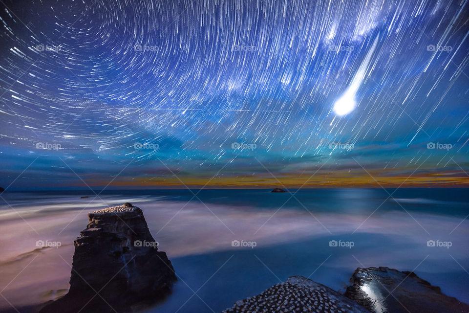 Muriwai gannet colony star trails