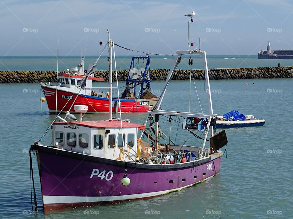 A bright purple fishing boat anchored in the harbor in Folkestone, England on a sunny summer day.