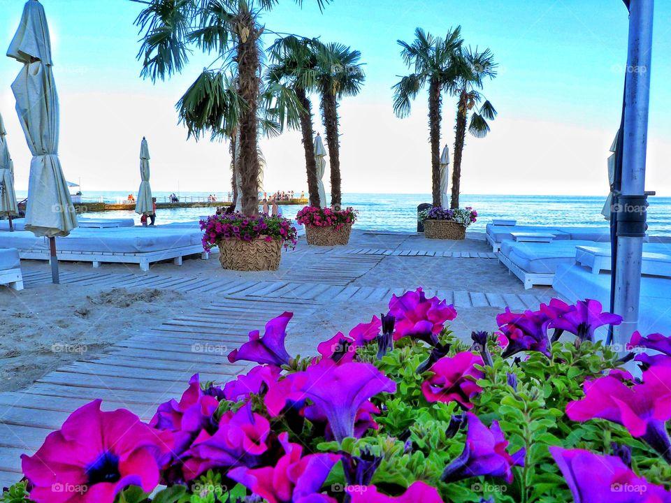Ibiza vibes
