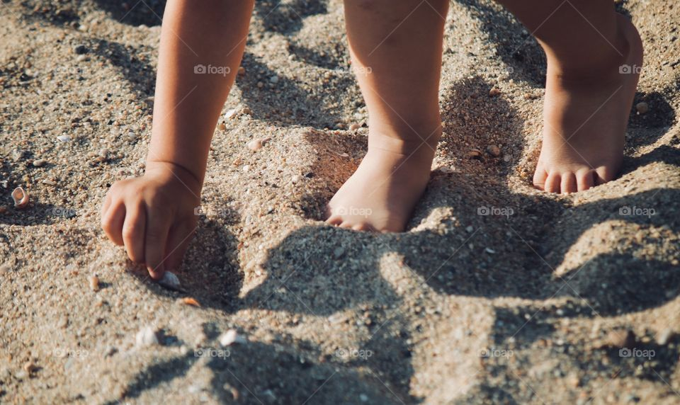 Toddler collecting seashells by the seashore