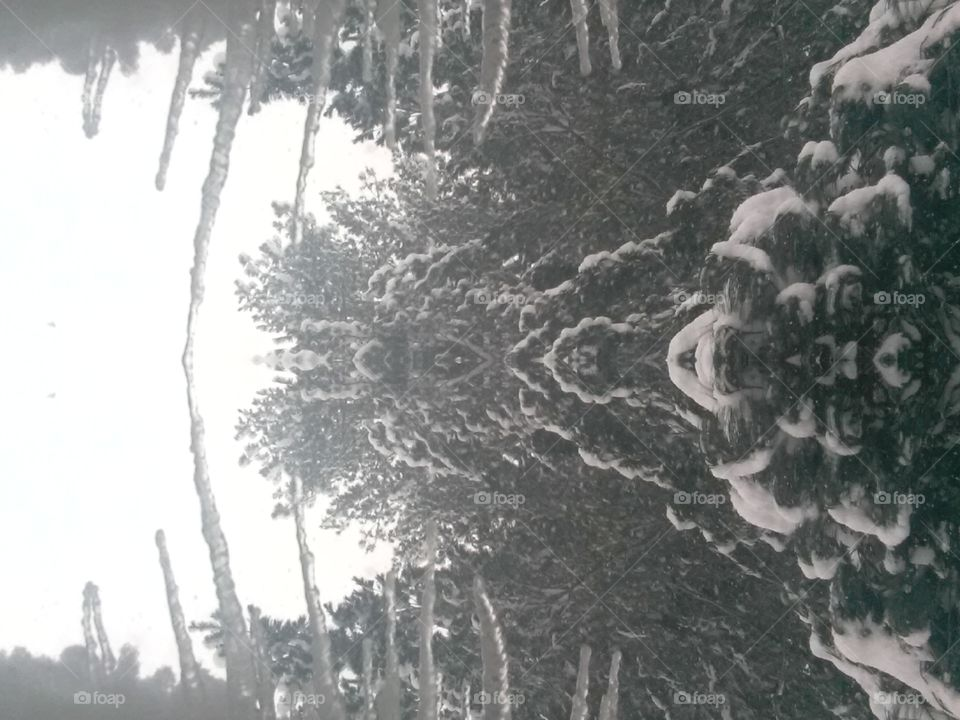 Winter vision