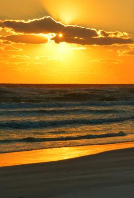 Starlight Sunset!