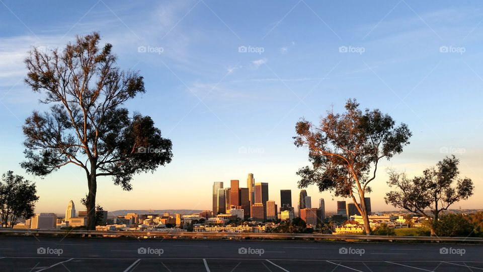 L.A. Morning