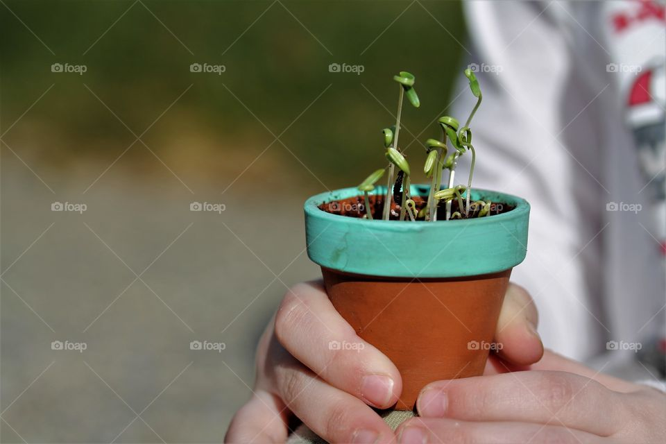 child holding new plants
