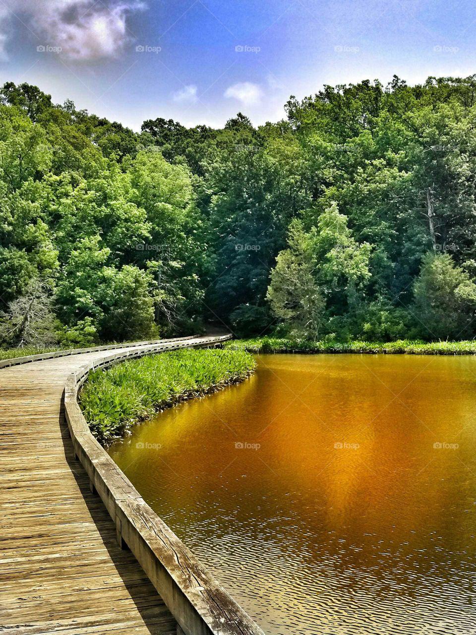 a bridge path