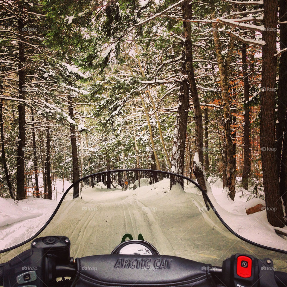 Looking over the snowmobile down the trail through the forest!