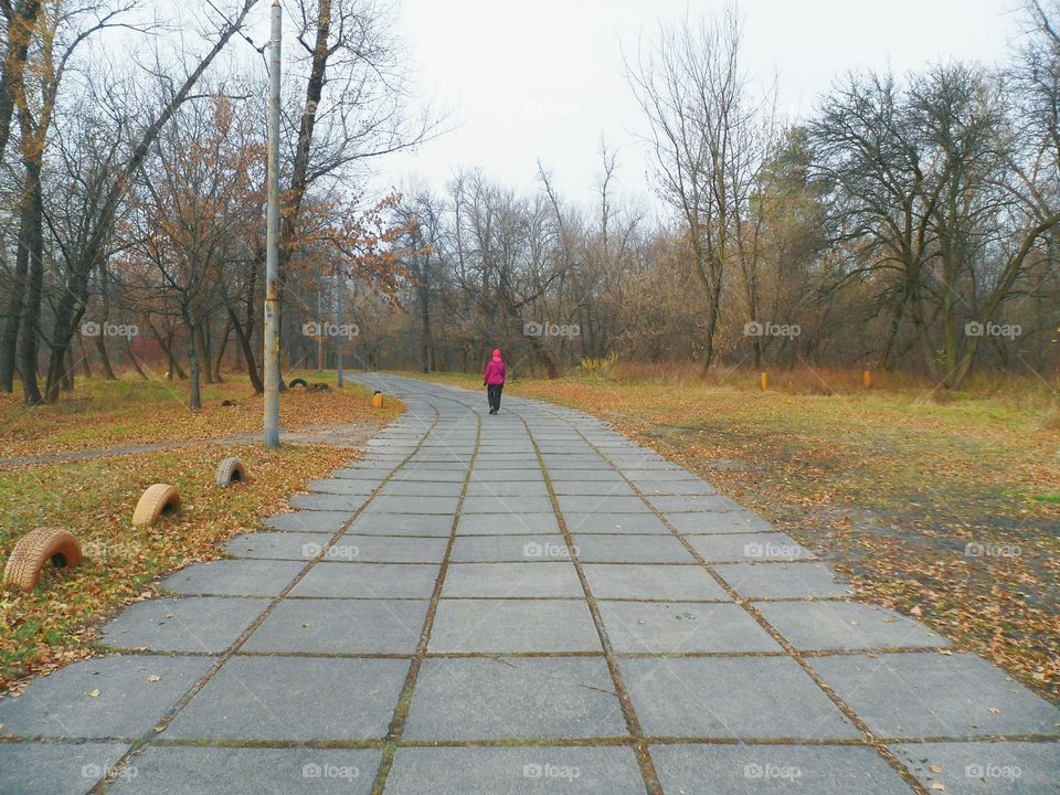 people walking on the road in the park, autumn 2016