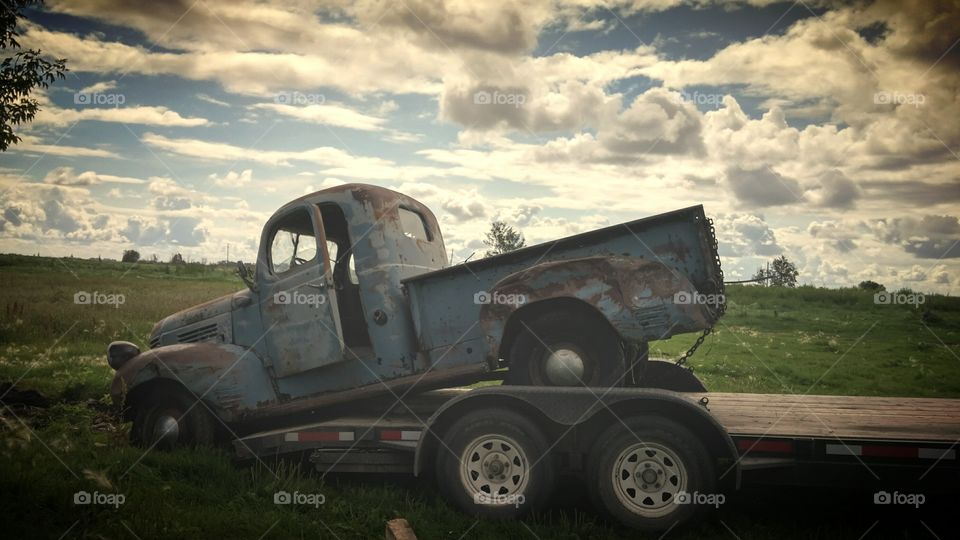saving the dead. we were driving down a random back road and found this old beauty to salvage.
