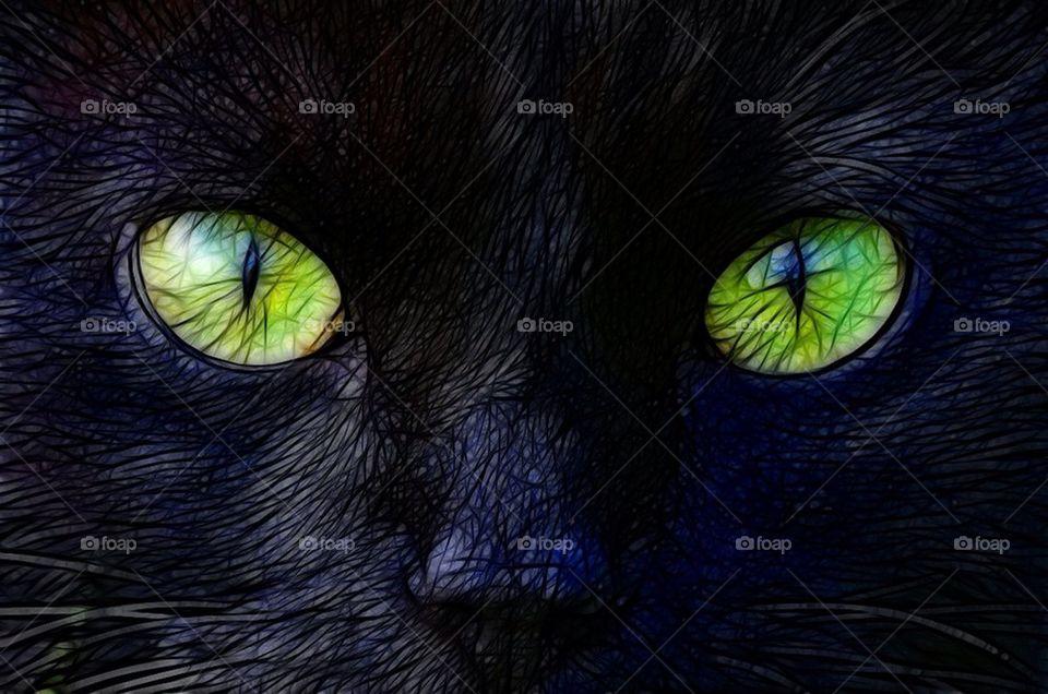 green closeup cat animal by cekari