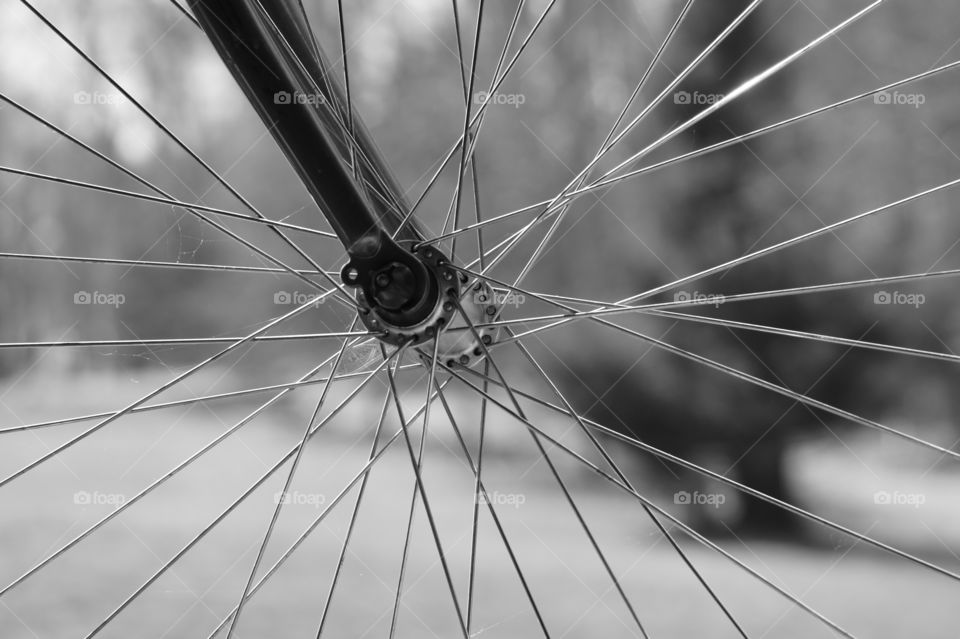 Bicycle tire spokes