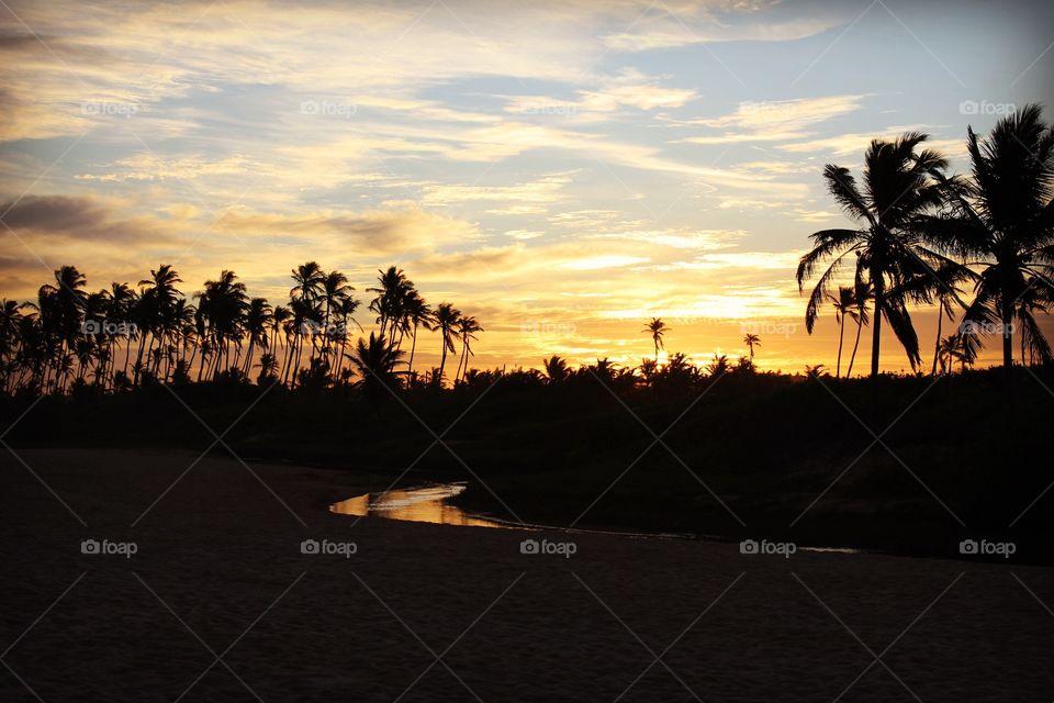 Golden beach sunset in Brazil