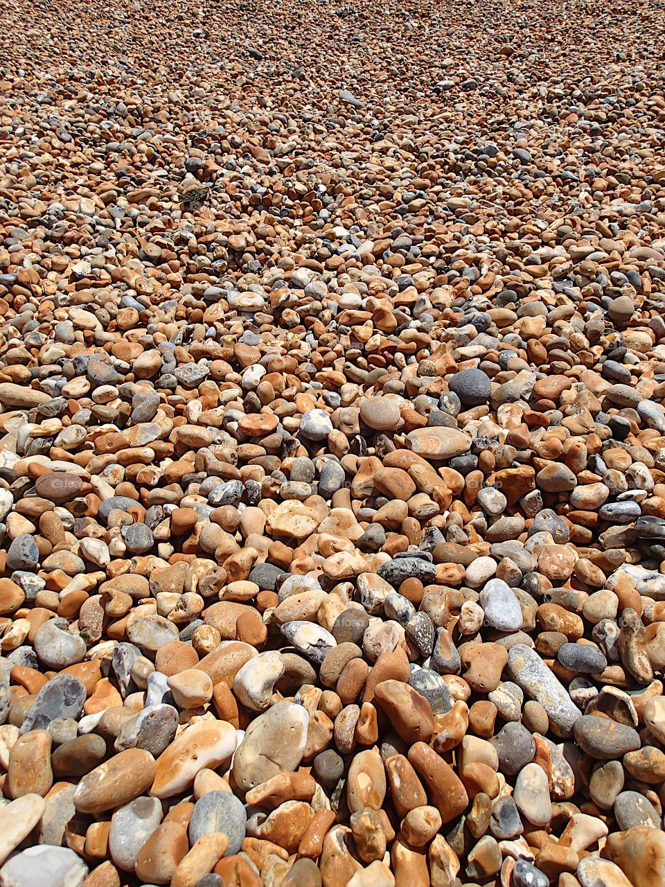 The beautiful texture of a rocky beach on the coast of England on a summer day.