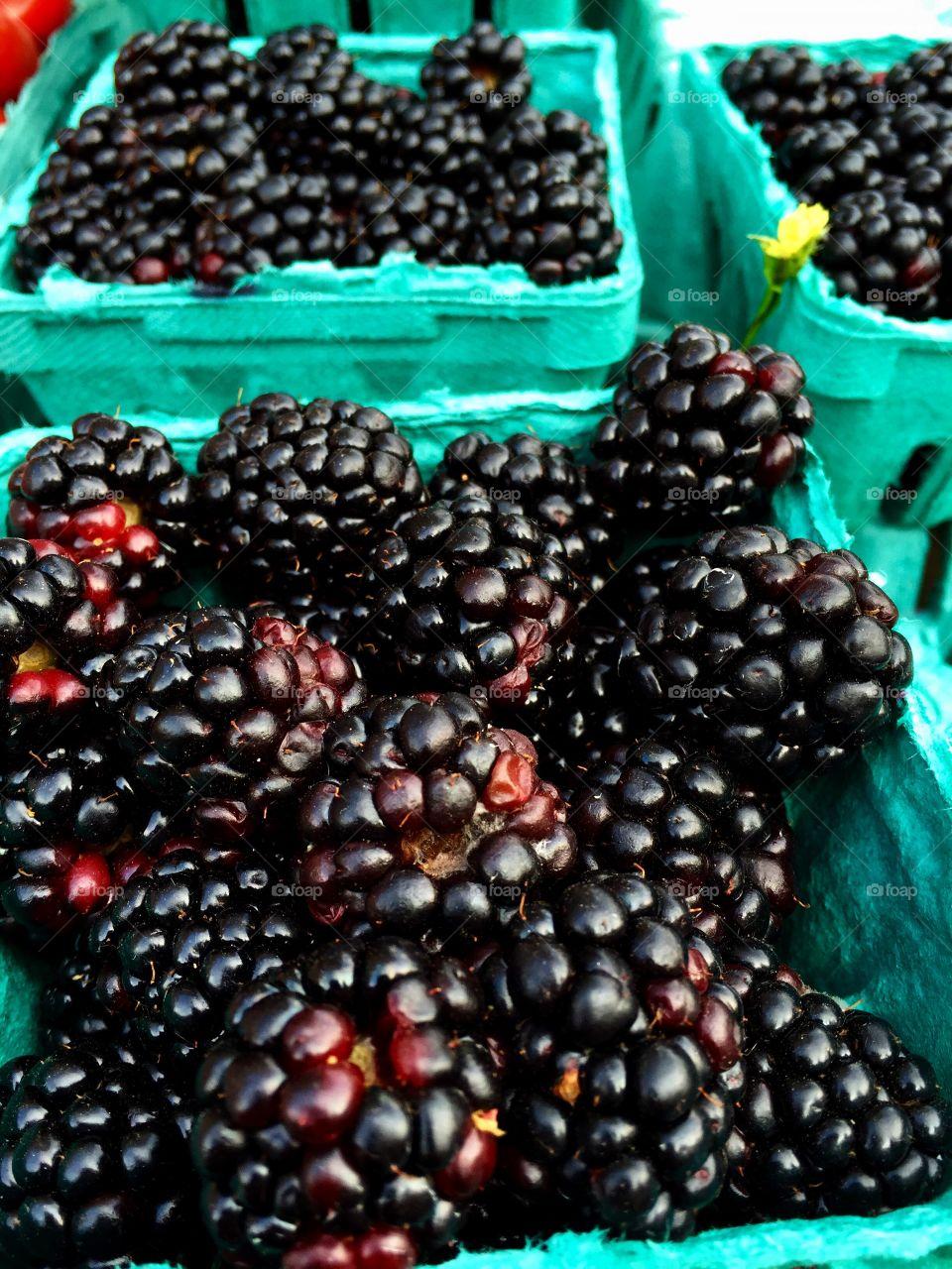 Blackberries on container